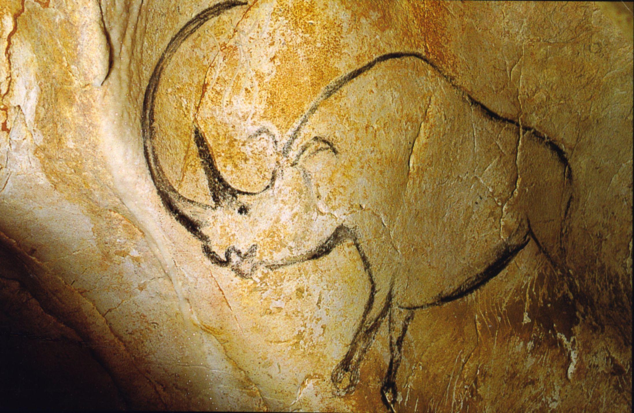 02_Rhinoceros