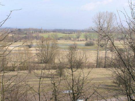 Foto: Unikát ve východních Čechách: Ptačí park přitahuje další druhy živočichů!