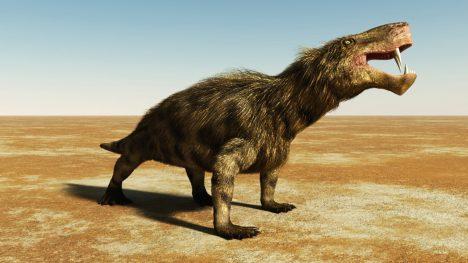 04 - Therapsid byl pravděpodobně předky savců.