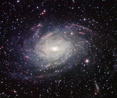 Foto: Černá díra na špacíru: Proč opustila svoje stanoviště?