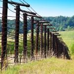 Zbytečná smrt na hranici: Proč musel zemřít německý občan Johann Dick?