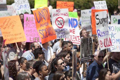 LOS ANGELES - APRIL 22: Pro science marchers defend the use of animals in biomedical research April 22nd, 2009 in Los Angeles. UCLA Pro-Test campaign estimates 800-1000 marchers attended.