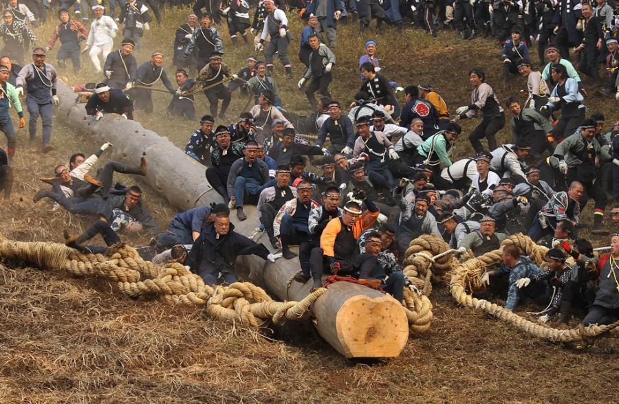 Onbashira Festival Takes Place