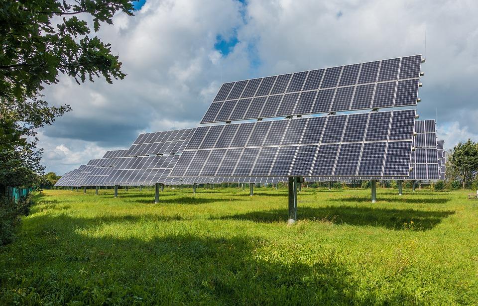 Porostou solární panely?