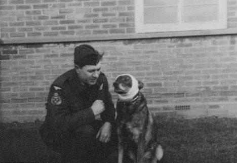 Foto: Válečný hrdina: Německý ovčák s československou trikolórou na obojku