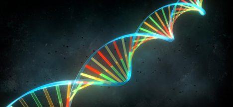 Foto: Vědci jsou na stopě vzniku homosexuality!