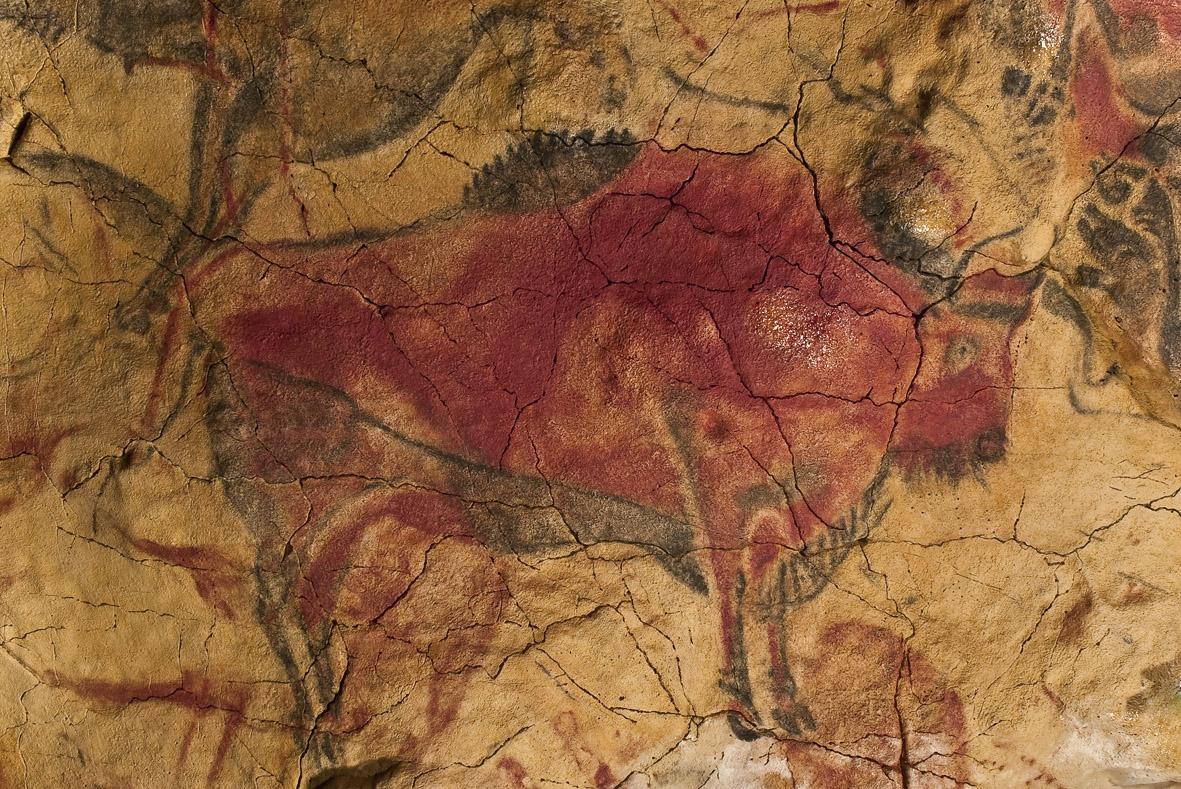Slavne Kresby V Altamire Pomohl Jejich Objevu Zatoulany Pes