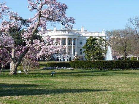 Americká vláda má dluhy a chce prodat Bílý dům. Levnému obchodu neodolá jeden farmář.