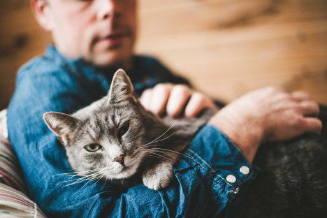 Foto: 5 překvapivých faktů o kočkách, o kterých jste neměli ani tušení