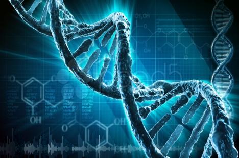 Je možné z DNA vyčíst homosexualitu?