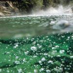 Amazonská řeka smrti existuje! Co do ní spadne, to se uvaří!