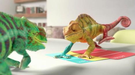 Lidé věří, že chameleoni dokáží na své kůži vytvořit jakoukoliv barvu. Jejich paleta je ale ve skutečnosti omezená.