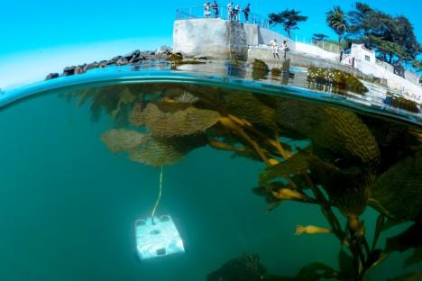 Podmořského drona ovládaného pomocí kabelu a vybaveného kamerou si můžete pořídit i vy. Jmenuje se Trident.
