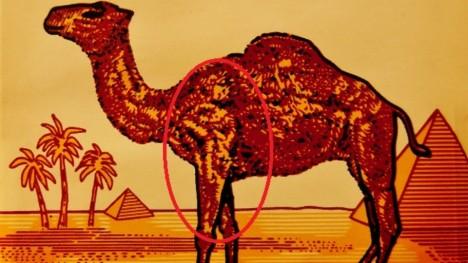 Přední noha velblouda na cigaretách značky Camel má ukrývat postavu mladíka s erekcí.