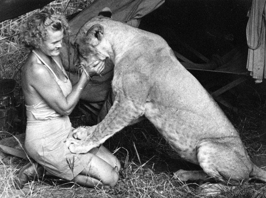 Kamarádství se lvicí dodává Adamsonové chuť do života.