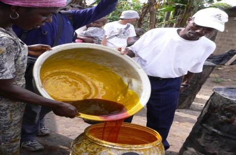 Výroba palmového oleje je obrovským byznysem, ze kterého ovšem mají afričtí dělníci jen velmi málo.
