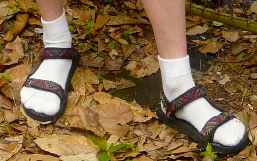 Sandals_Worn_wth_White_Ankle_Socks