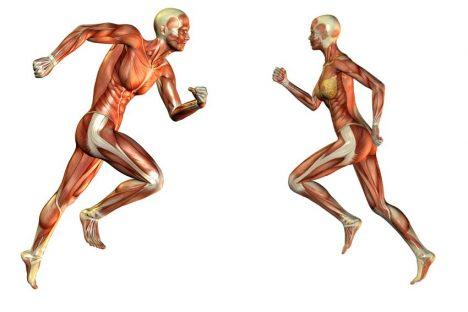 Foto: Proč muži běhají rychleji než ženy? Významnou roli hraje testosteron