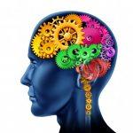 Bez čí pomoci se mozek neobejde?