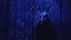 divoký lovec