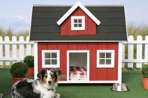 dog-house-designs-Lonneberga