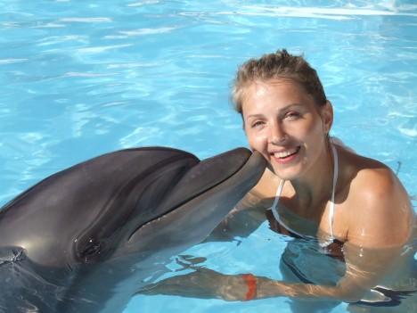 Delfíni dokáží porozumět speciálně vytvořenému znakovému jazyku podobně jako třeba šimpanzi. Mohou tak s lidmi komunikovat.