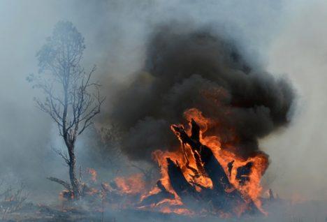 Foto: Existují strašliví ohniví muži?