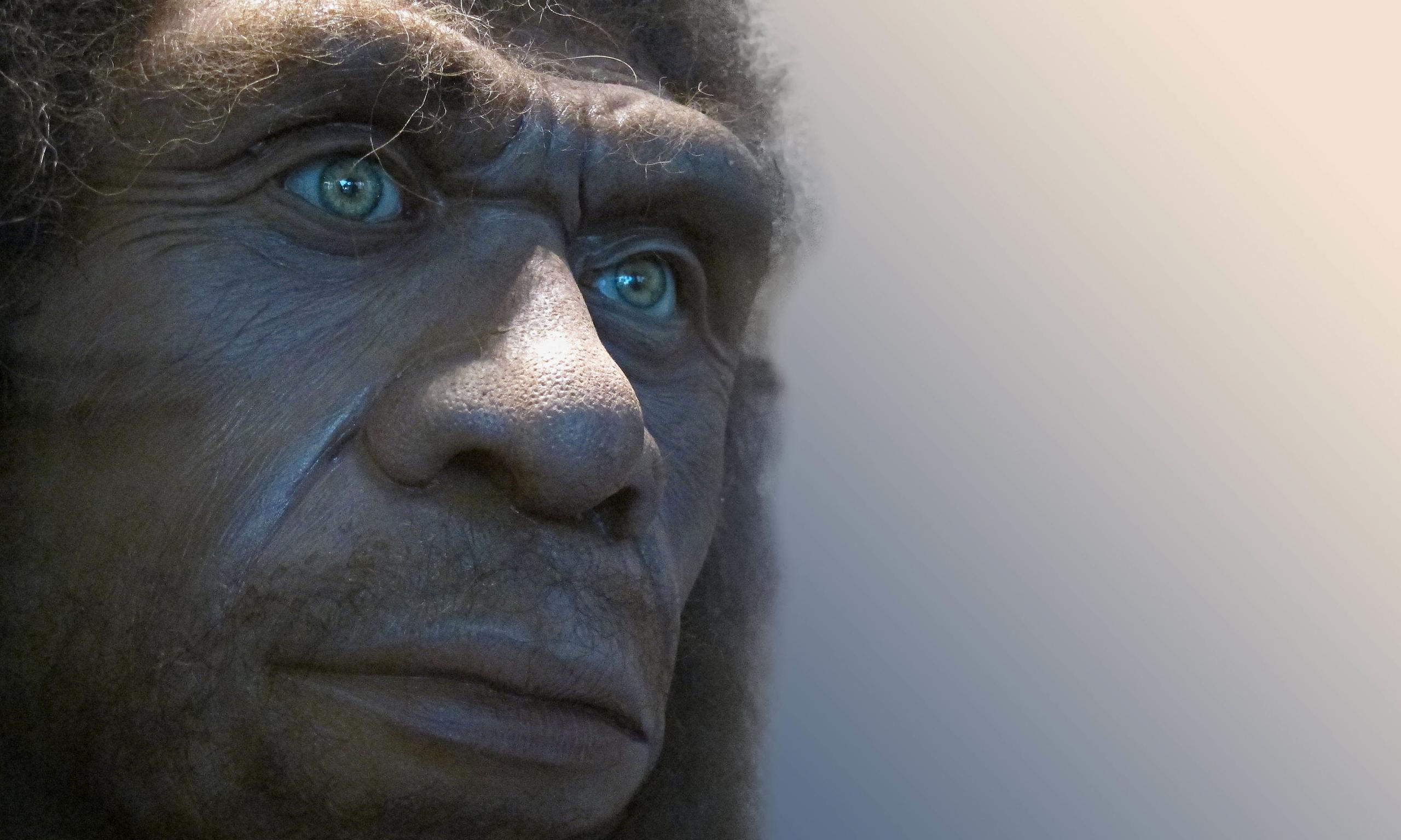 neanderthal_man_face_hair