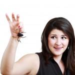 Stovky druhů odporné havěti: Žijí i u vás doma!