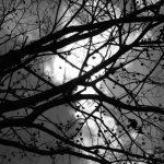 Temnota za bílého dne: Co ji způsobuje?