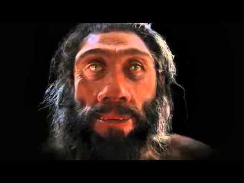 VIDEO: Lidská evoluce v 90 vteřinách