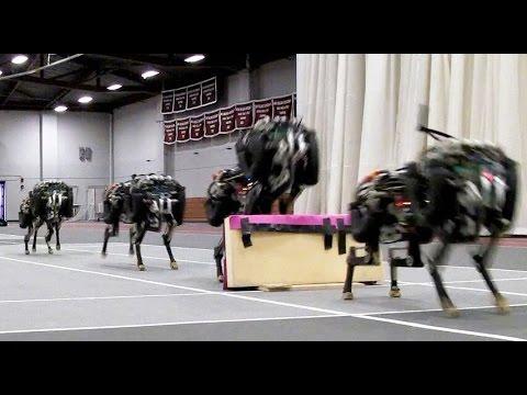 VIDEO: Robot, který skáče přes překážky