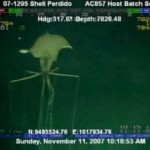 VIDEO: Záhadný tvor s neuvěřitelně dlouhými chapadly!